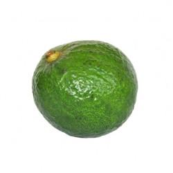 Avocado Pear Dominicano Box 20kg