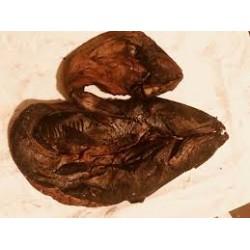 Catfish Ahumado Abierto 5kg