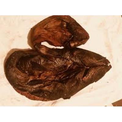 Smoked Catfish Open 5kg