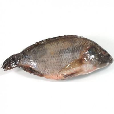 Tilapia Dried With Salt Koobi 1kg